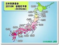 chart_large_2010.jpg