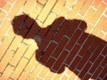 me-shadow.jpg